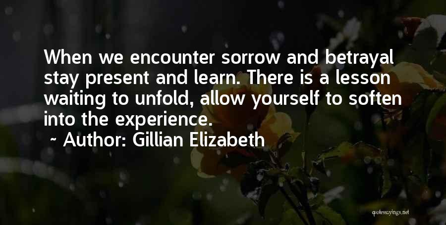Sorrow And Healing Quotes By Gillian Elizabeth