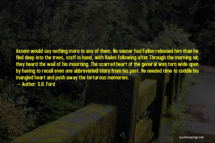 Sorrow And Healing Quotes By S.R. Ford