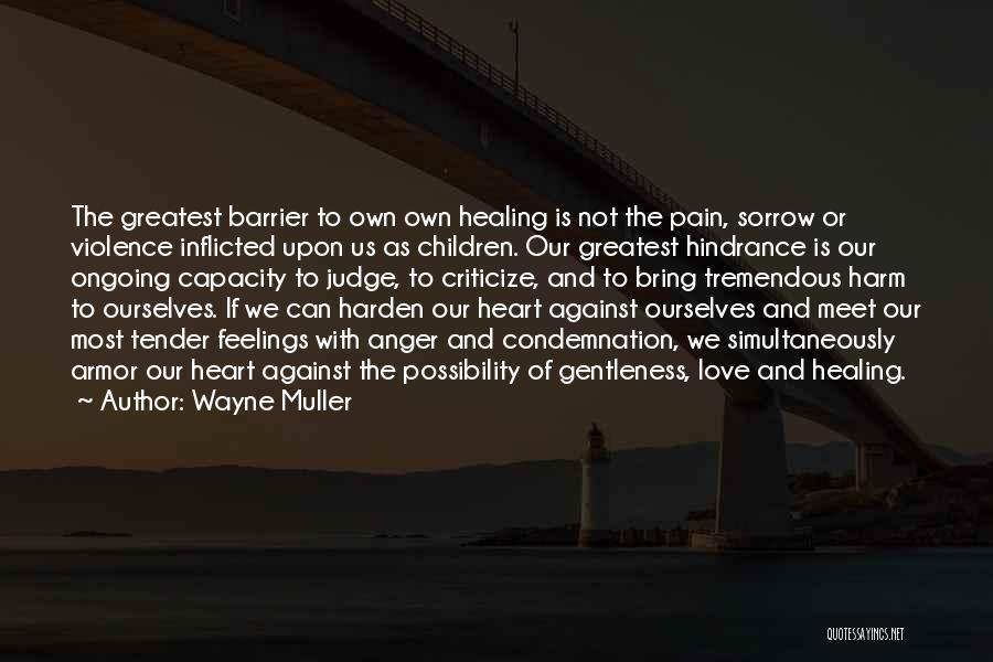 Sorrow And Healing Quotes By Wayne Muller