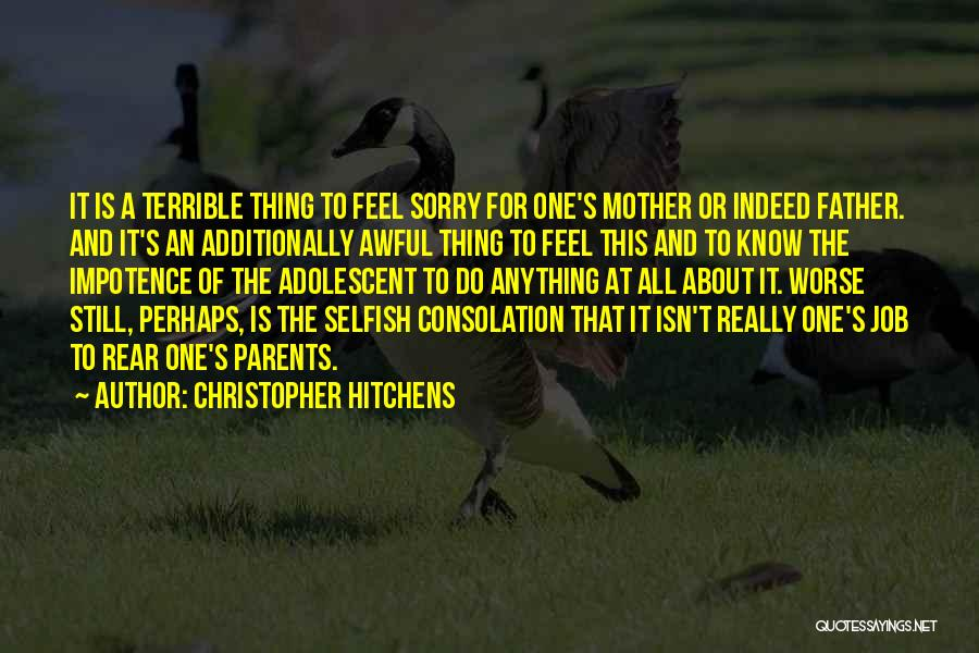 Sorry About That Quotes By Christopher Hitchens