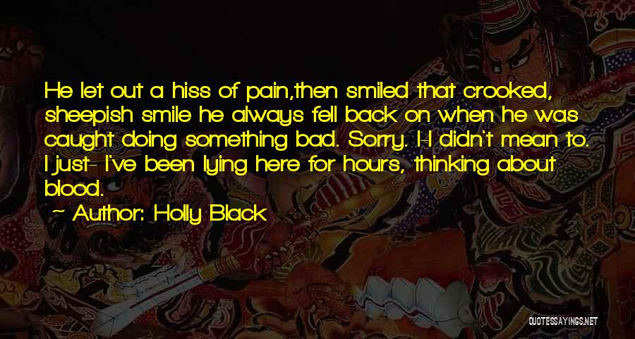 Sorry About That Quotes By Holly Black