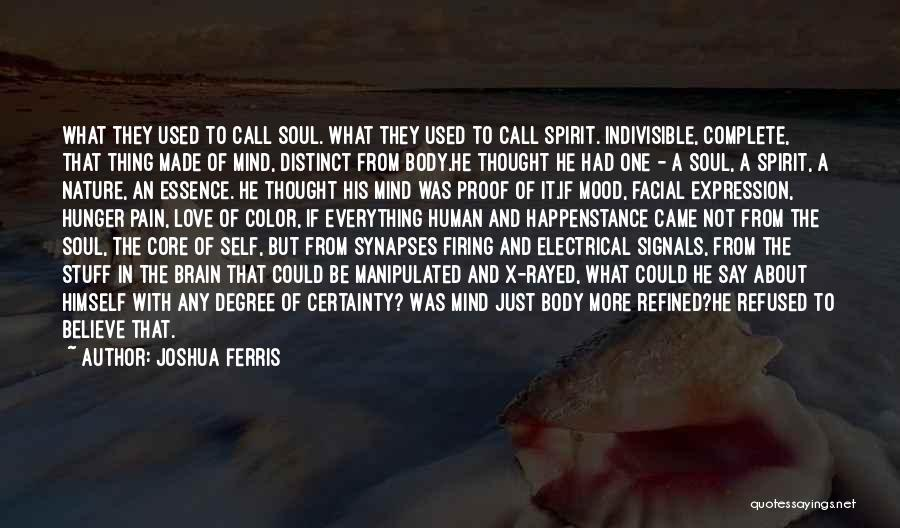 Soul And Nature Quotes By Joshua Ferris