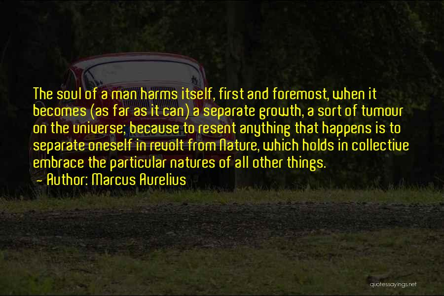 Soul And Nature Quotes By Marcus Aurelius
