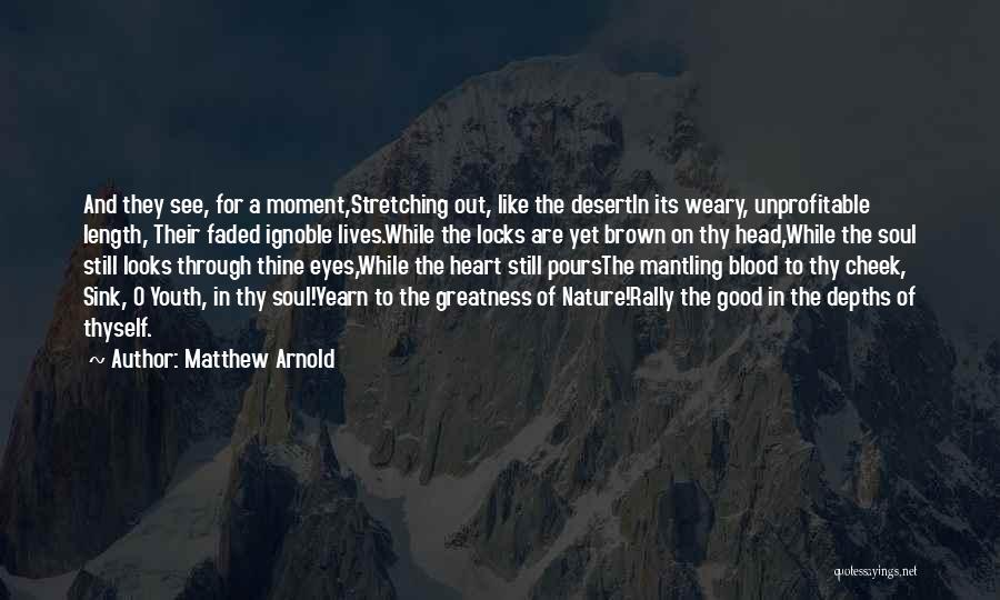 Soul And Nature Quotes By Matthew Arnold