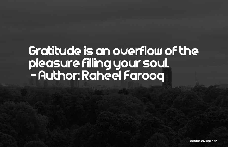 Soul Filling Quotes By Raheel Farooq