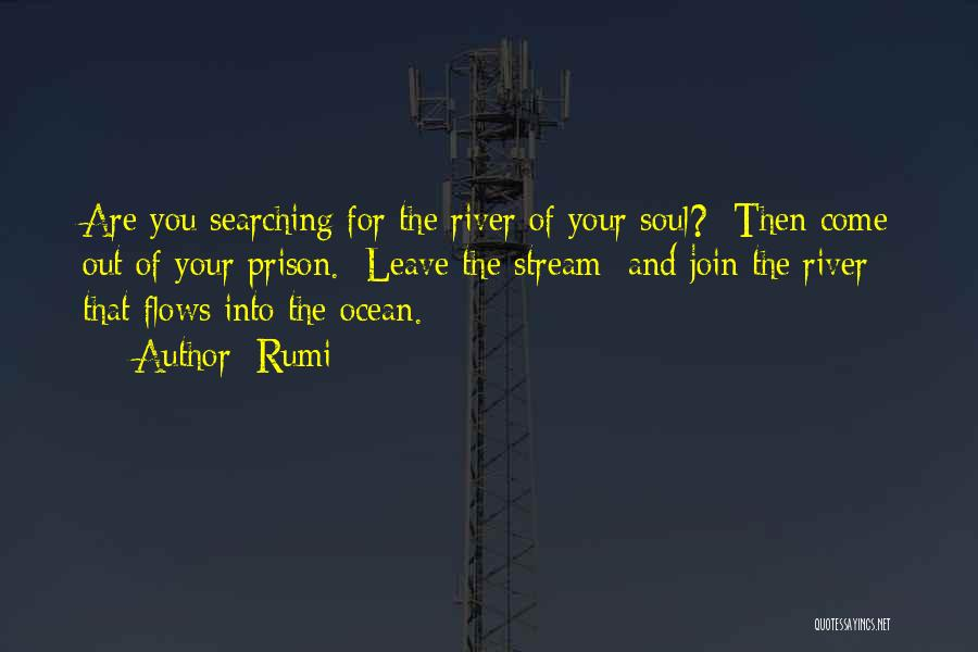Soul Searching Quotes By Rumi