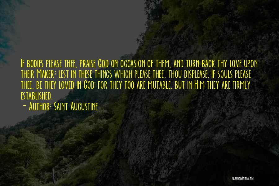 Souls And Bodies Quotes By Saint Augustine