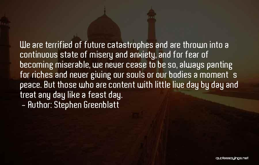 Souls And Bodies Quotes By Stephen Greenblatt