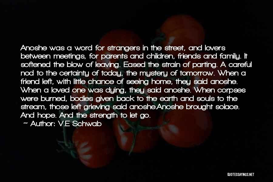Souls And Bodies Quotes By V.E Schwab
