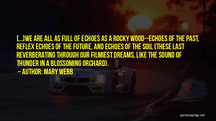 Sound Of Thunder Quotes By Mary Webb