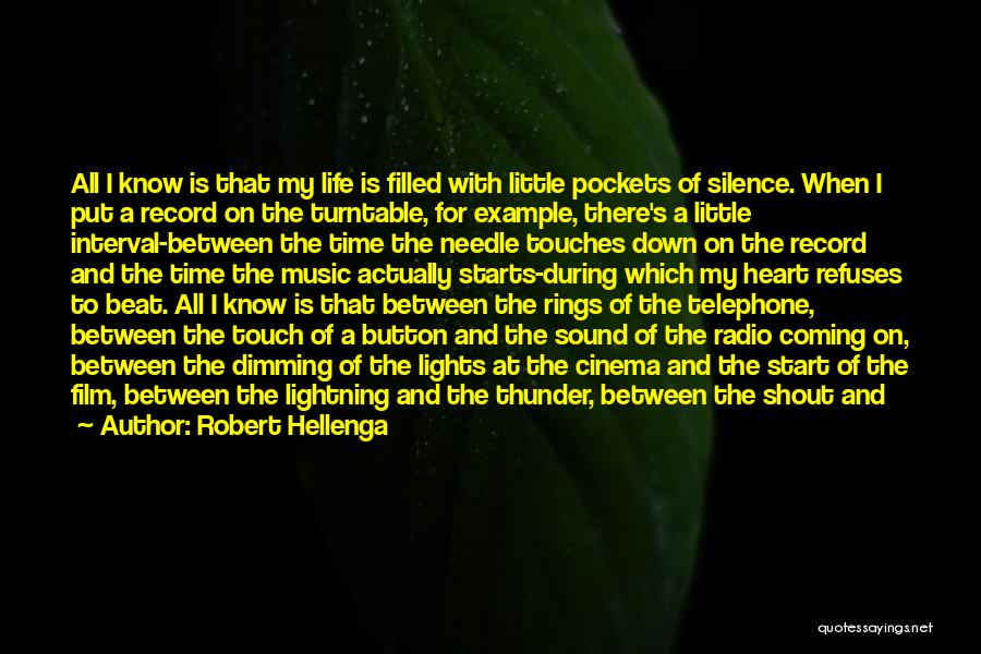 Sound Of Thunder Quotes By Robert Hellenga