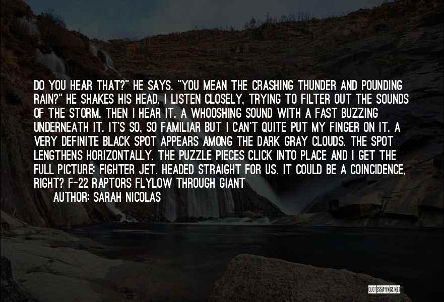 Sound Of Thunder Quotes By Sarah Nicolas