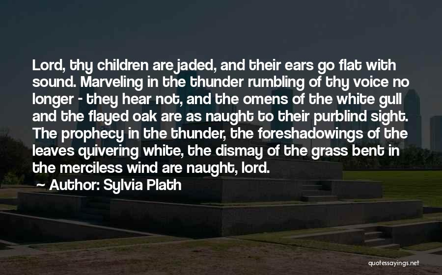 Sound Of Thunder Quotes By Sylvia Plath