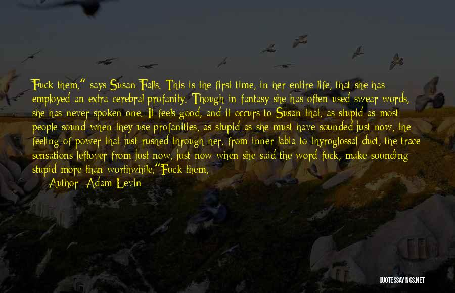 Sounding Stupid Quotes By Adam Levin
