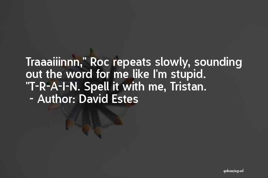 Sounding Stupid Quotes By David Estes