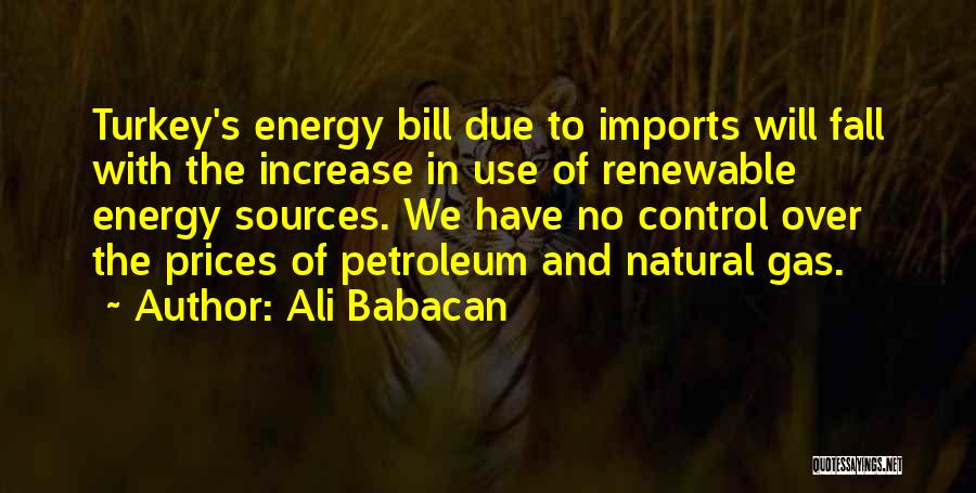 Sources Of Energy Quotes By Ali Babacan