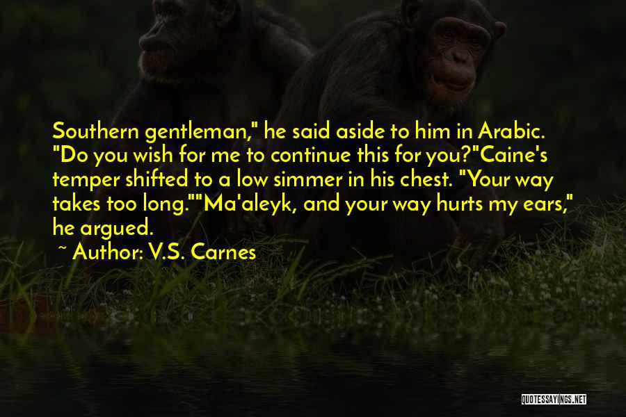 Southern Gentleman Quotes By V.S. Carnes