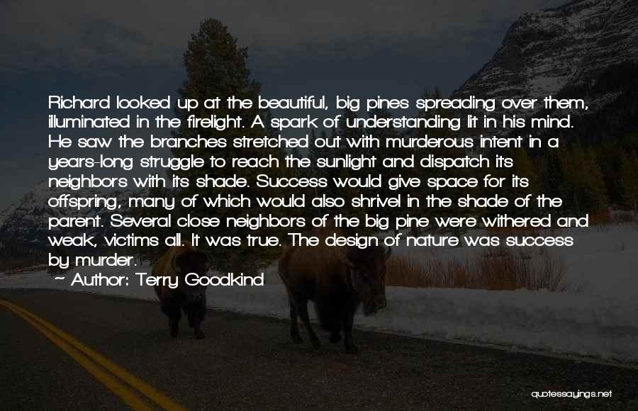Space And Design Quotes By Terry Goodkind