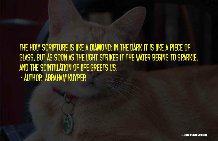Sparkle In Your Life Quotes By Abraham Kuyper