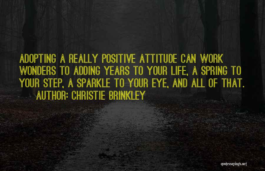 Sparkle In Your Life Quotes By Christie Brinkley