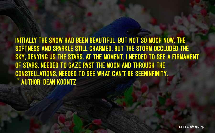 Sparkle In Your Life Quotes By Dean Koontz