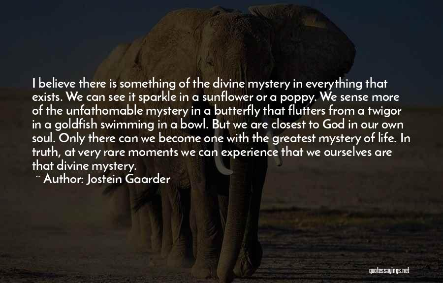 Sparkle In Your Life Quotes By Jostein Gaarder