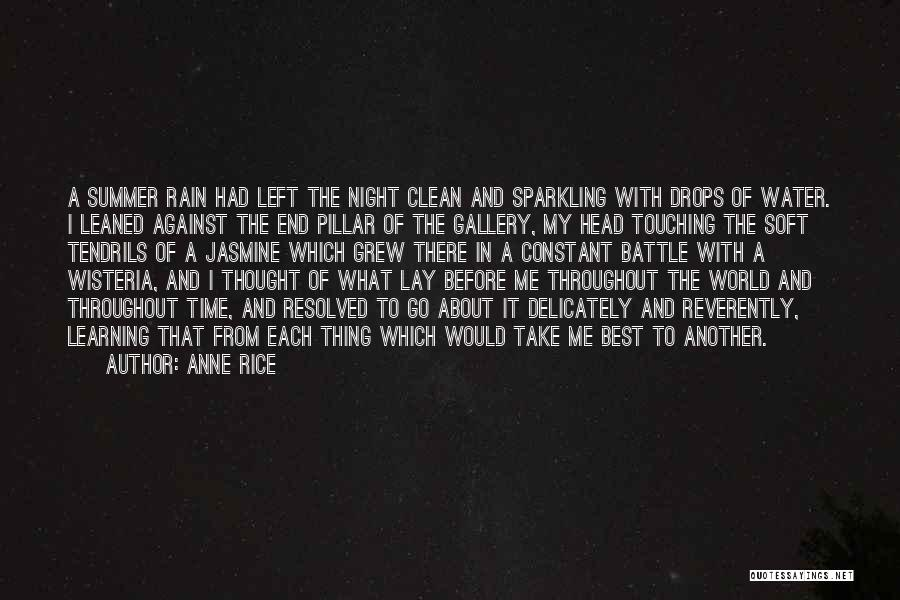 Sparkling Night Quotes By Anne Rice