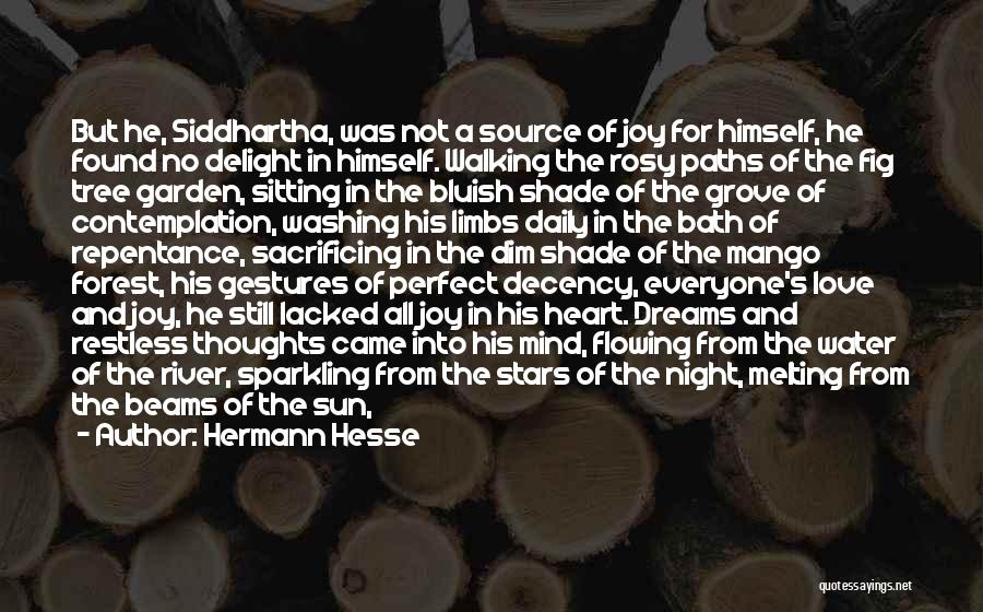 Sparkling Night Quotes By Hermann Hesse
