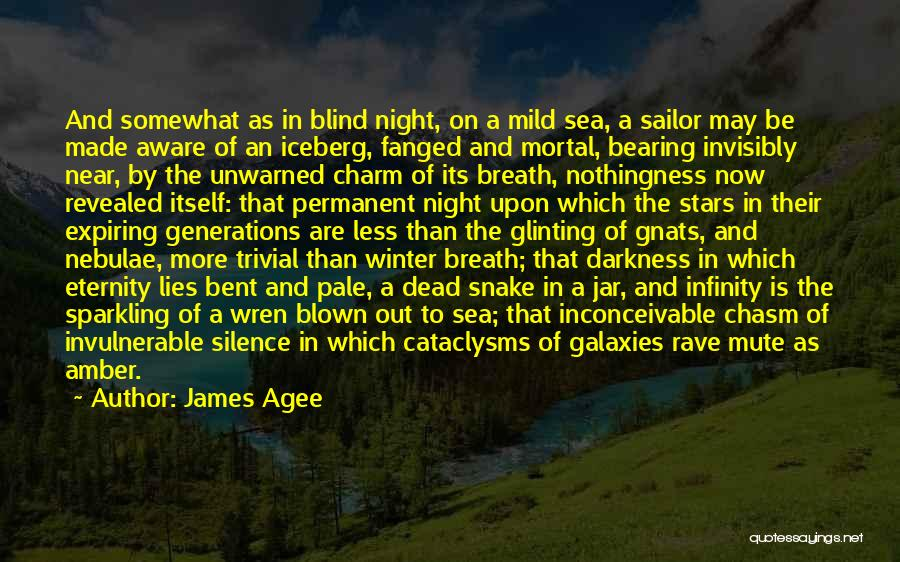 Sparkling Night Quotes By James Agee