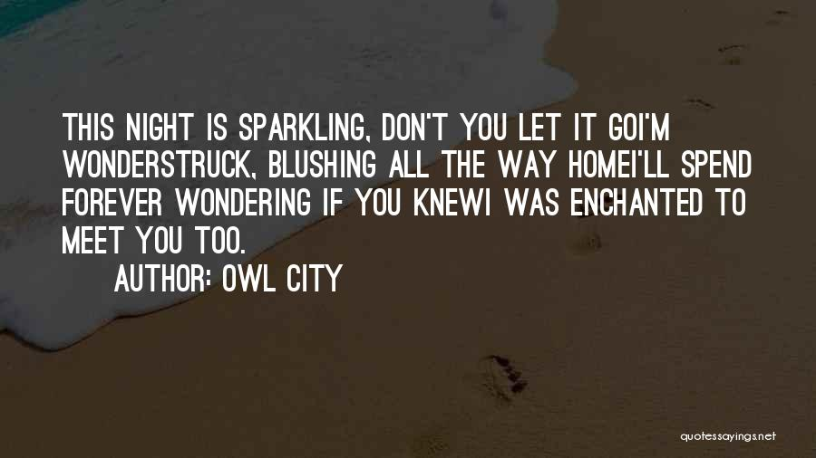 Sparkling Night Quotes By Owl City