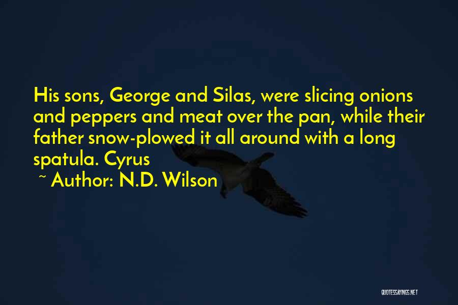 Spatula Quotes By N.D. Wilson
