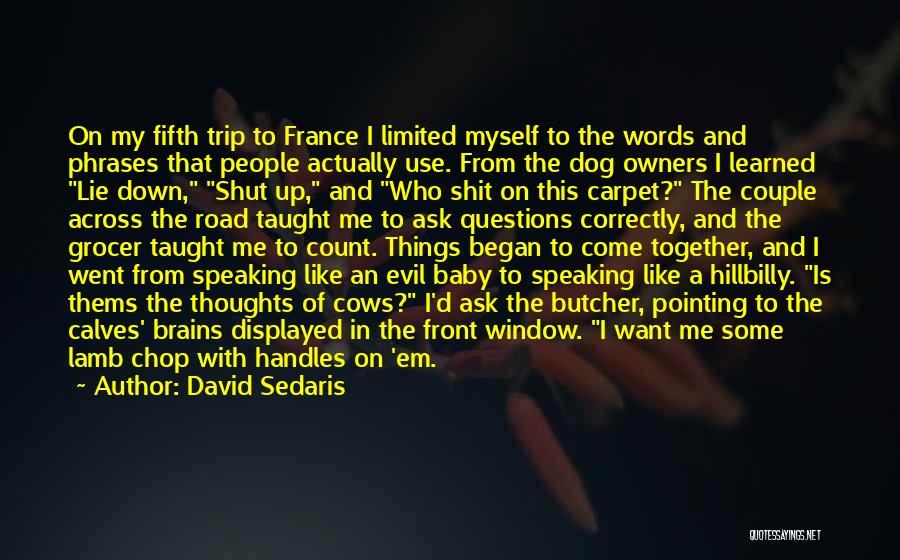 Speaking Correctly Quotes By David Sedaris