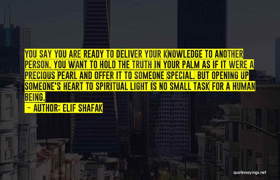 Special Offer Quotes By Elif Shafak
