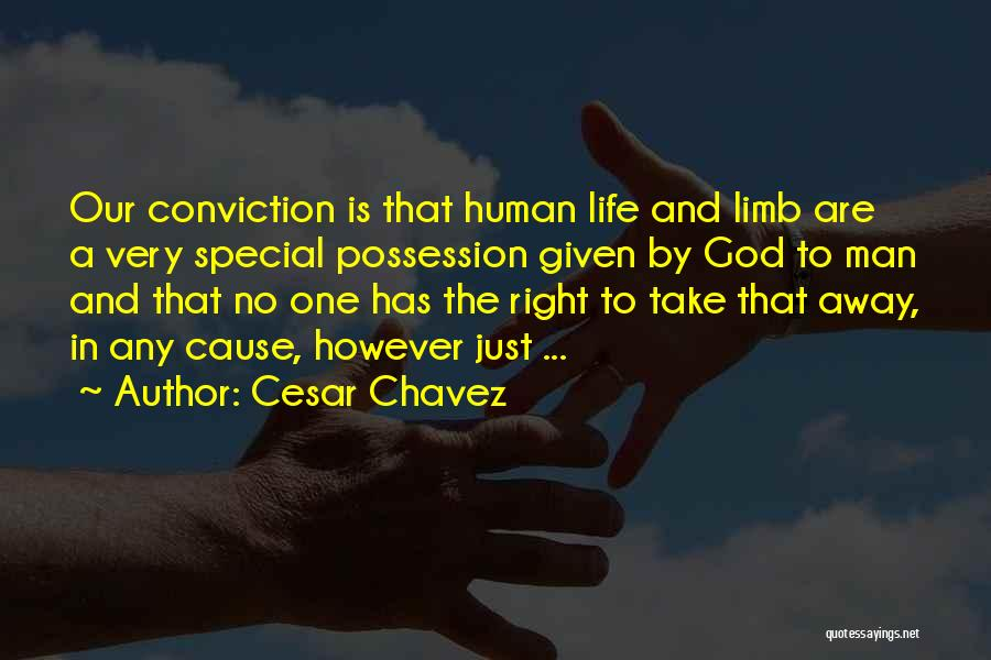 Special One In Life Quotes By Cesar Chavez