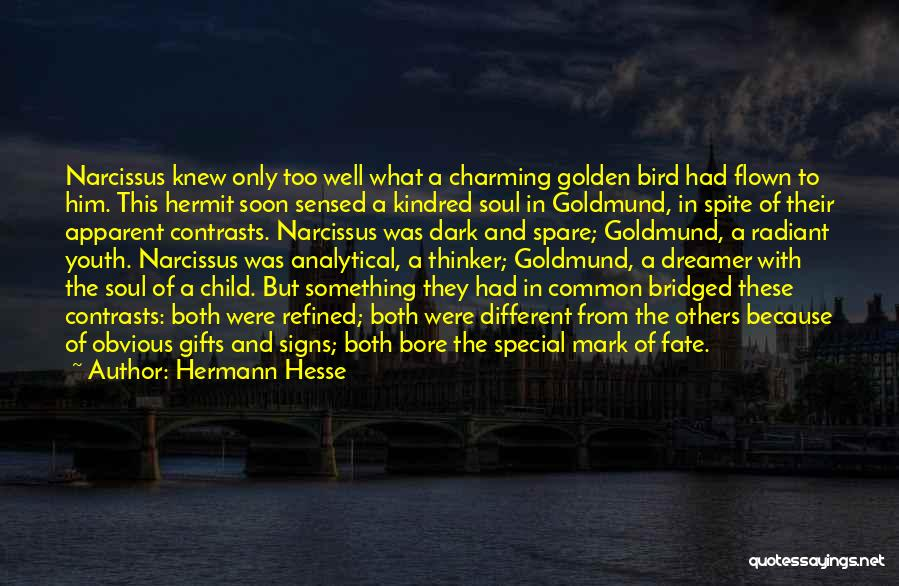 Special To Him Quotes By Hermann Hesse