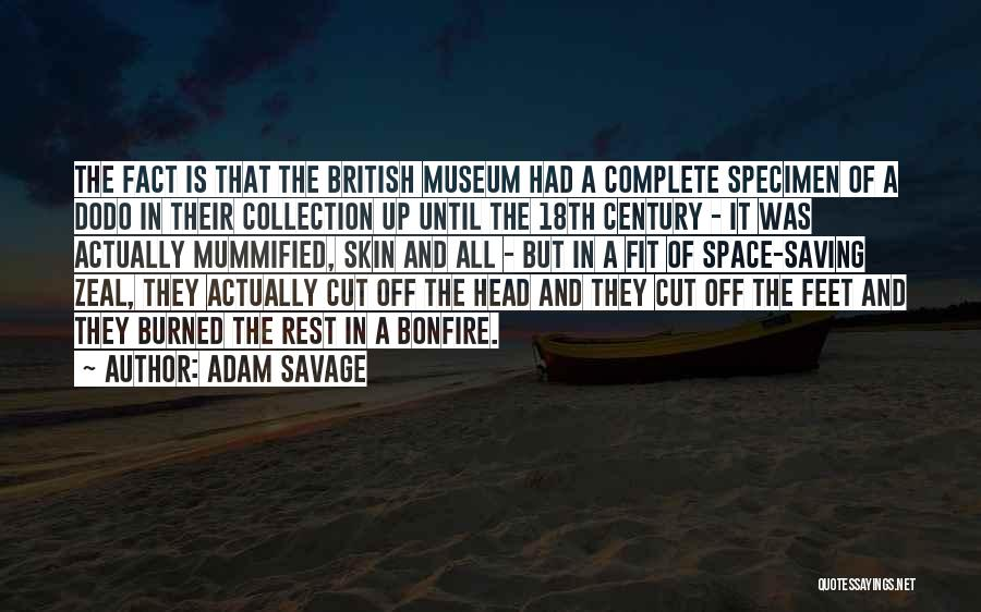 Specimen Collection Quotes By Adam Savage