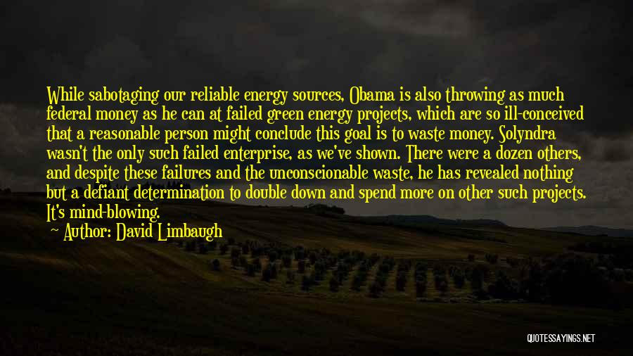 Spend The Money Quotes By David Limbaugh