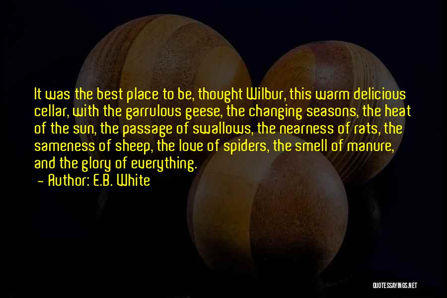 Spiders And Love Quotes By E.B. White