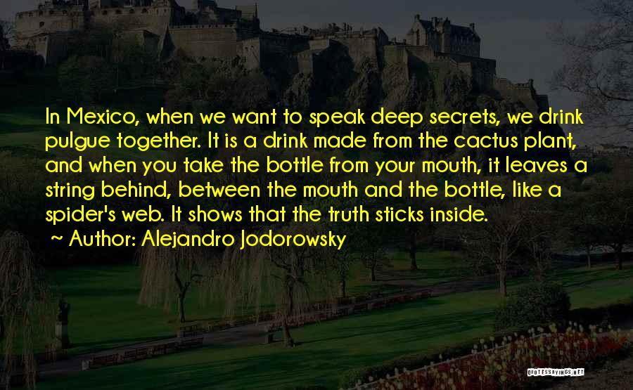 Spider's Web Quotes By Alejandro Jodorowsky