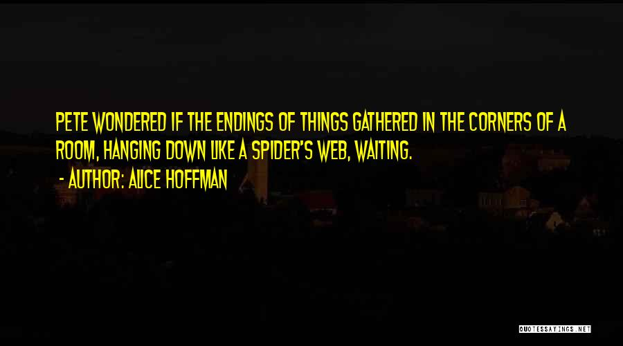 Spider's Web Quotes By Alice Hoffman