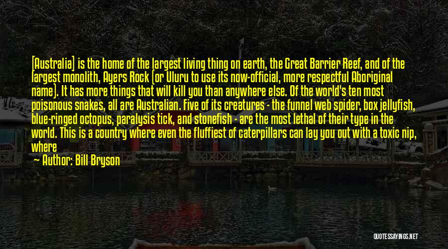Spider's Web Quotes By Bill Bryson
