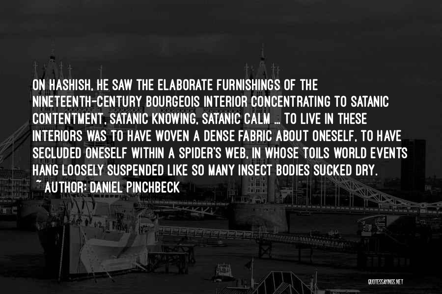 Spider's Web Quotes By Daniel Pinchbeck