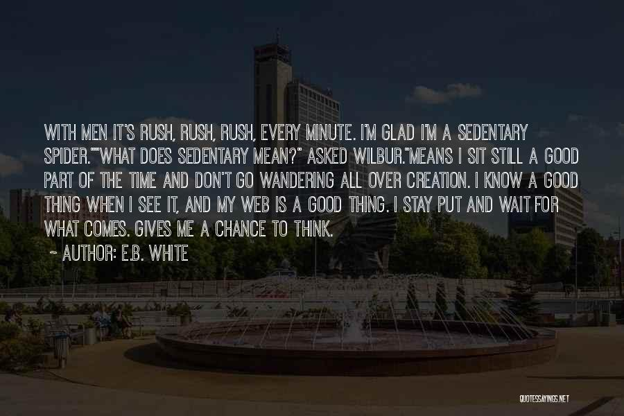 Spider's Web Quotes By E.B. White