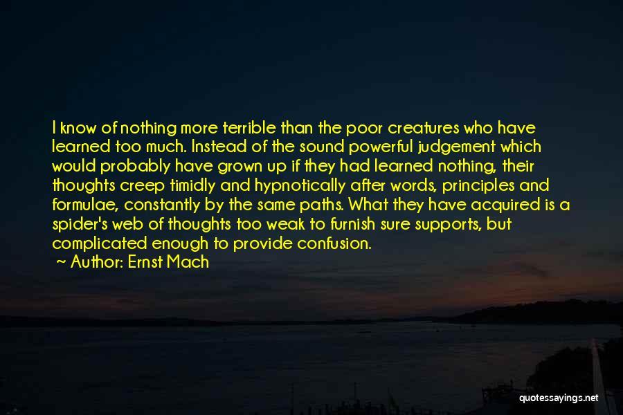Spider's Web Quotes By Ernst Mach