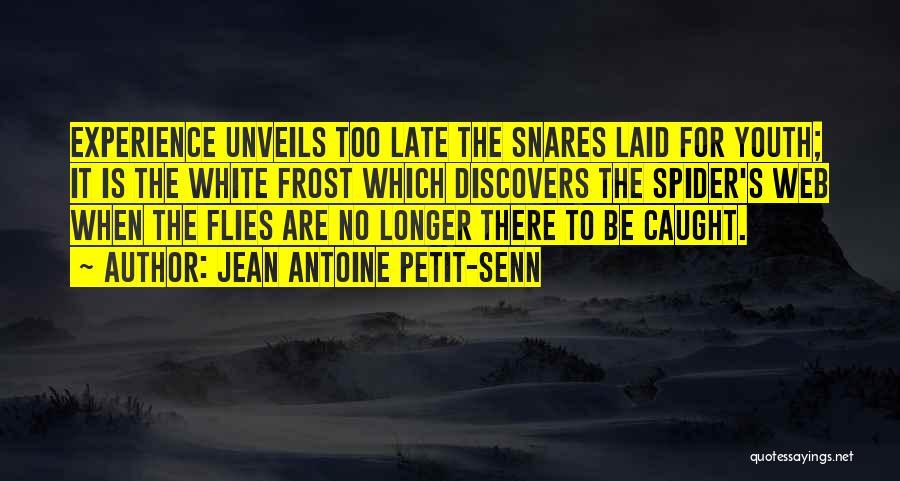 Spider's Web Quotes By Jean Antoine Petit-Senn
