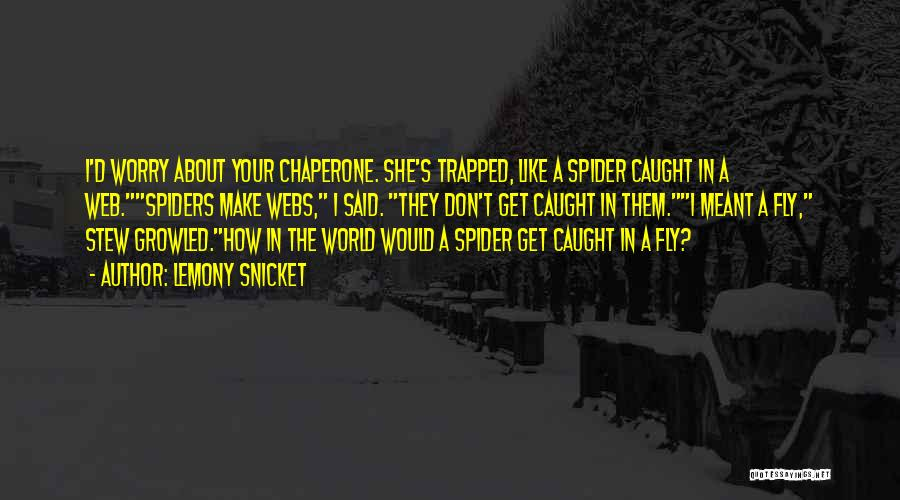 Spider's Web Quotes By Lemony Snicket