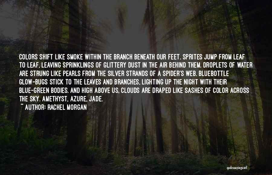 Spider's Web Quotes By Rachel Morgan