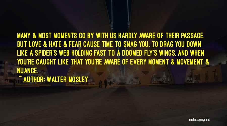 Spider's Web Quotes By Walter Mosley