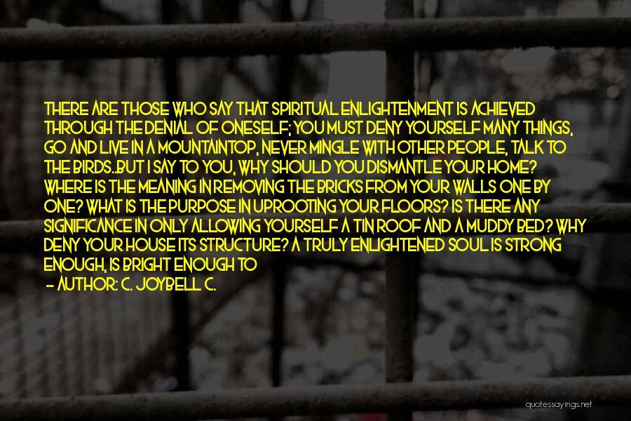 Spirit Life Quotes By C. JoyBell C.
