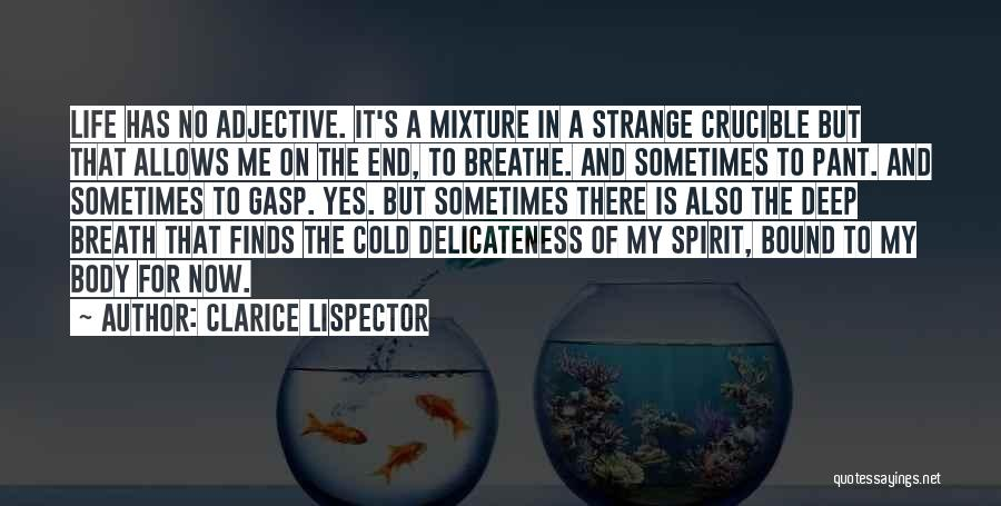 Spirit Life Quotes By Clarice Lispector